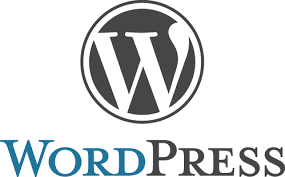 WordPress - Using WordPress to build your business website